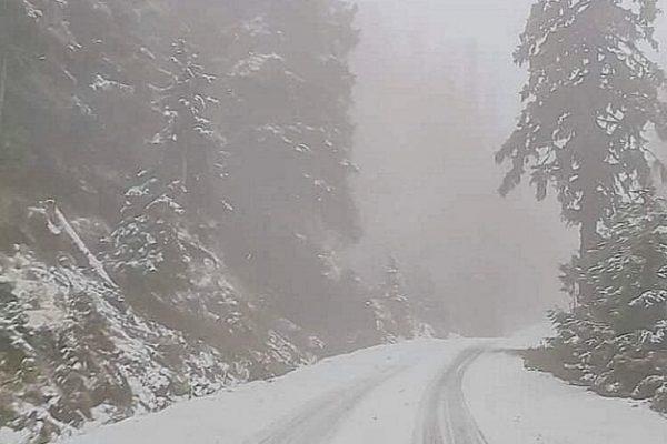 Силен сняг вали в Родопите